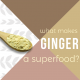 Ginger-Powder-blog