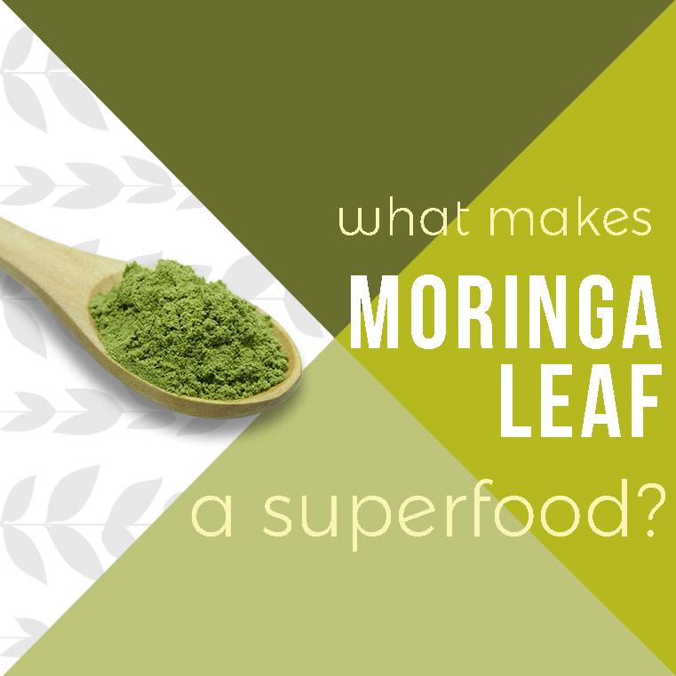 Moringa-Powder-blog