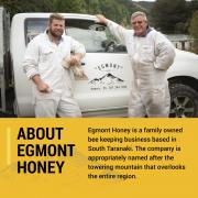 Egmont-Listing-Thumbnail-Graphic-Brand-1-800x800